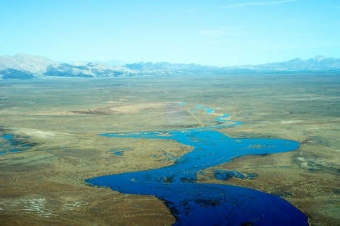 Seth-Cothrun_Rivers-Return_Edible-Baja-Arizona_05-480x319